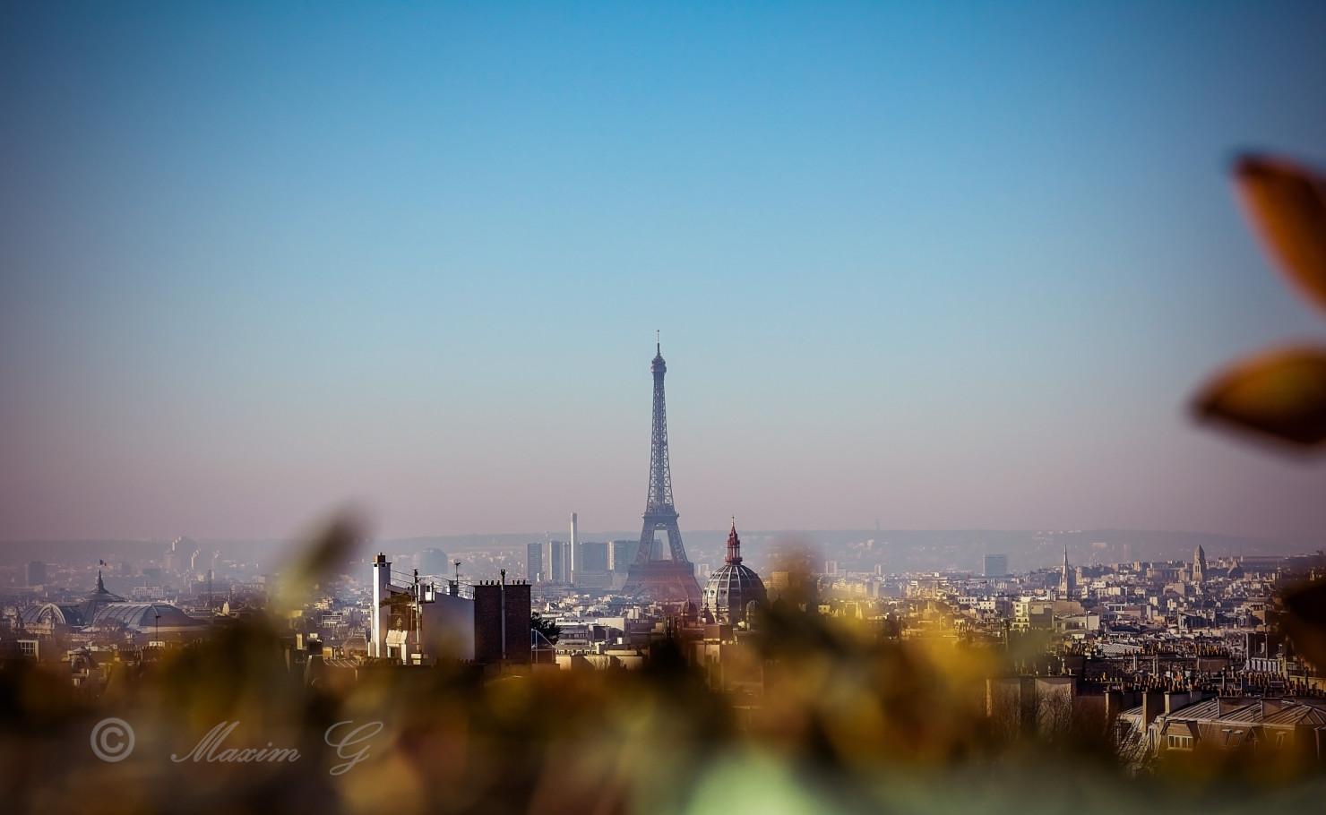 Eiffeltower  la Tour Eiffel  Paris France