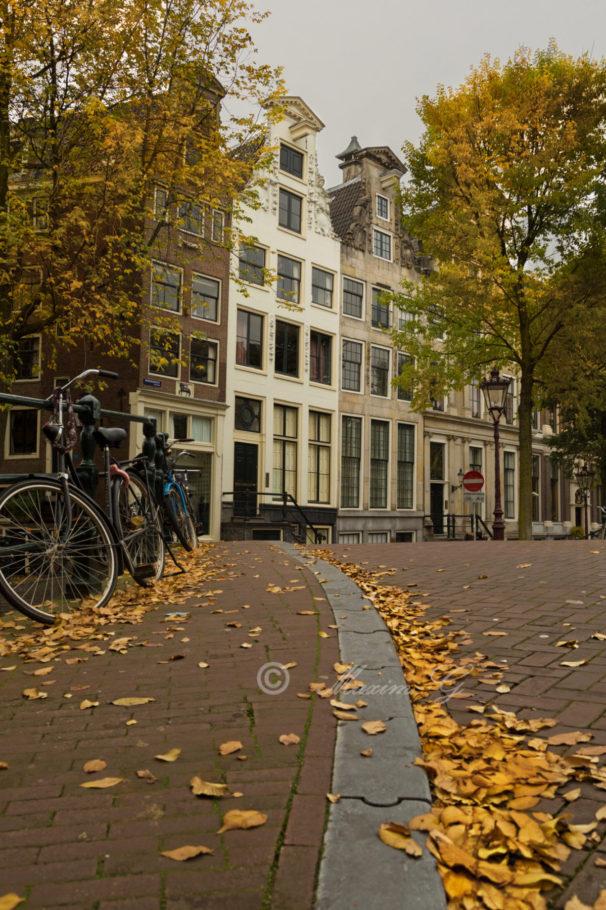 Fall in Amsterdam