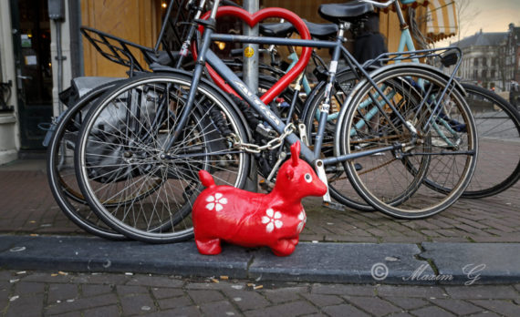 #amsterdam #pictures for sale #canon #bikes #deer